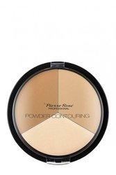 PIERRE RENE Powder Contouring paletka do konturowania twarzy - 01
